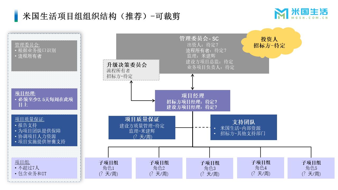 项目管理-项目经历-项目报告模板 (1)