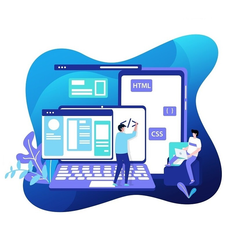 SEO-网站建设-网站开发Illustration