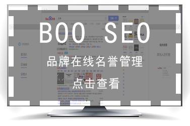 SEO-在线名誉管理-BOO-2
